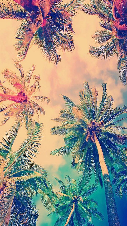 False Color Coconut Trees iPhone 6 Wallpaper