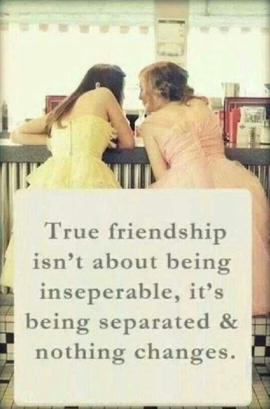Funny-Quotes-about-Friendship
