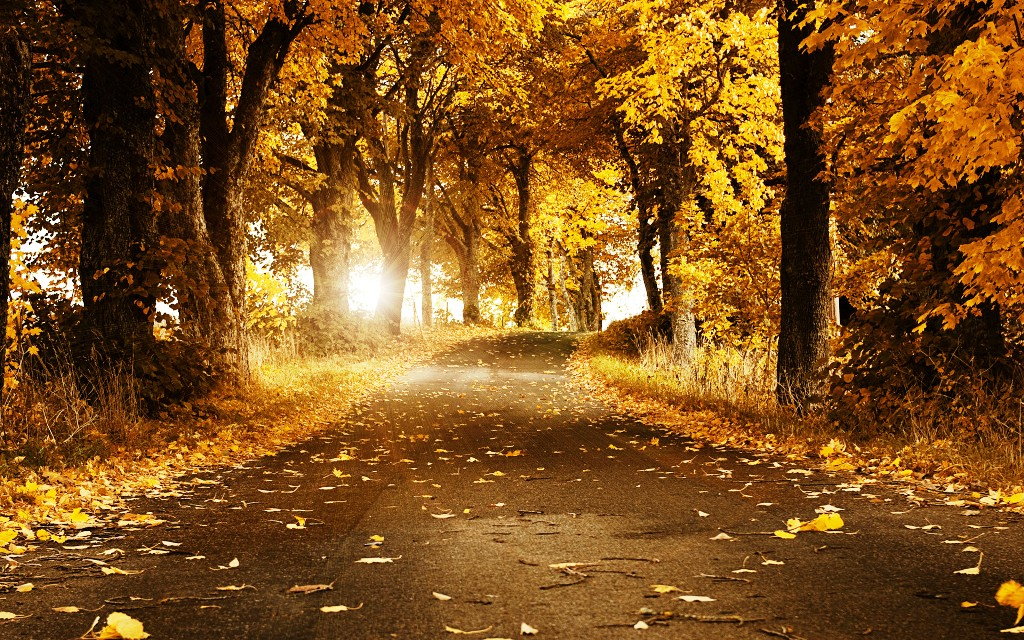 14-beautiful-autumn-wallpapers