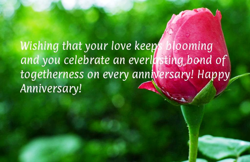 15 Best Happy Anniversary Quotes Ideas For You 183 Inspired Luv