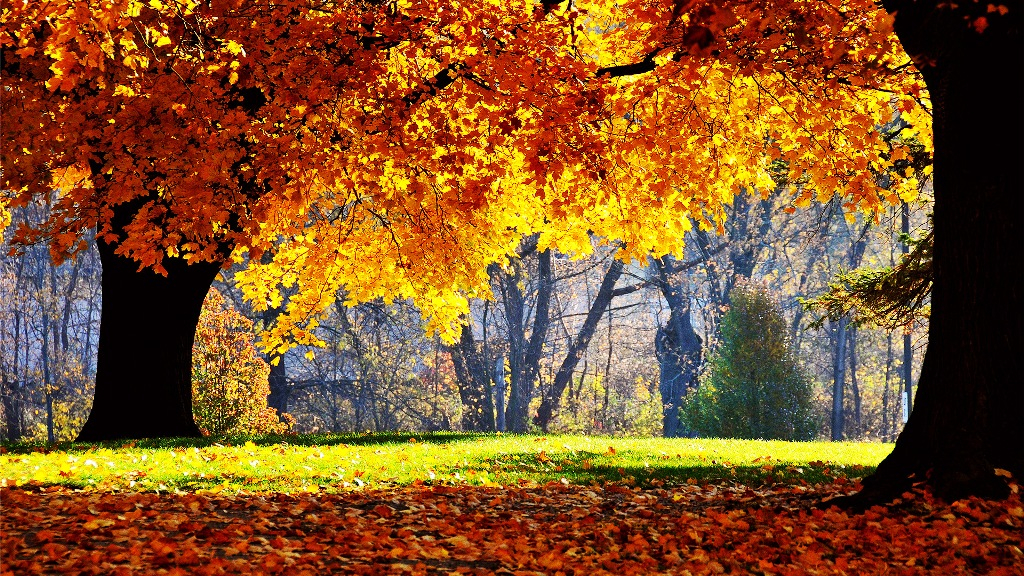 15-beautiful-autumn-wallpapers