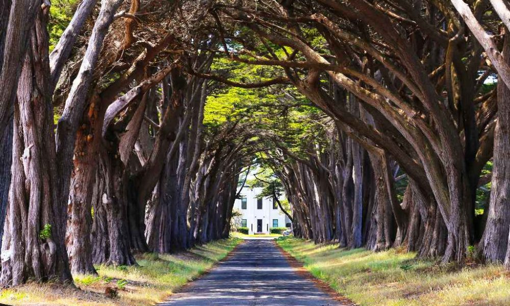 15 Beautiful Places In California You Must Visit 183 Inspired Luv