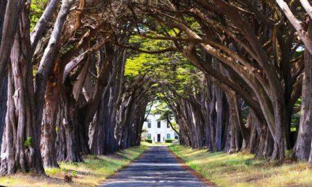 17-beautiful-places-in-california