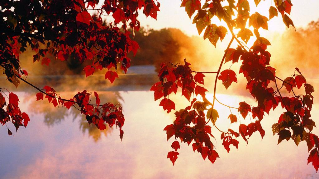 2-beautiful-autumn-wallpapers