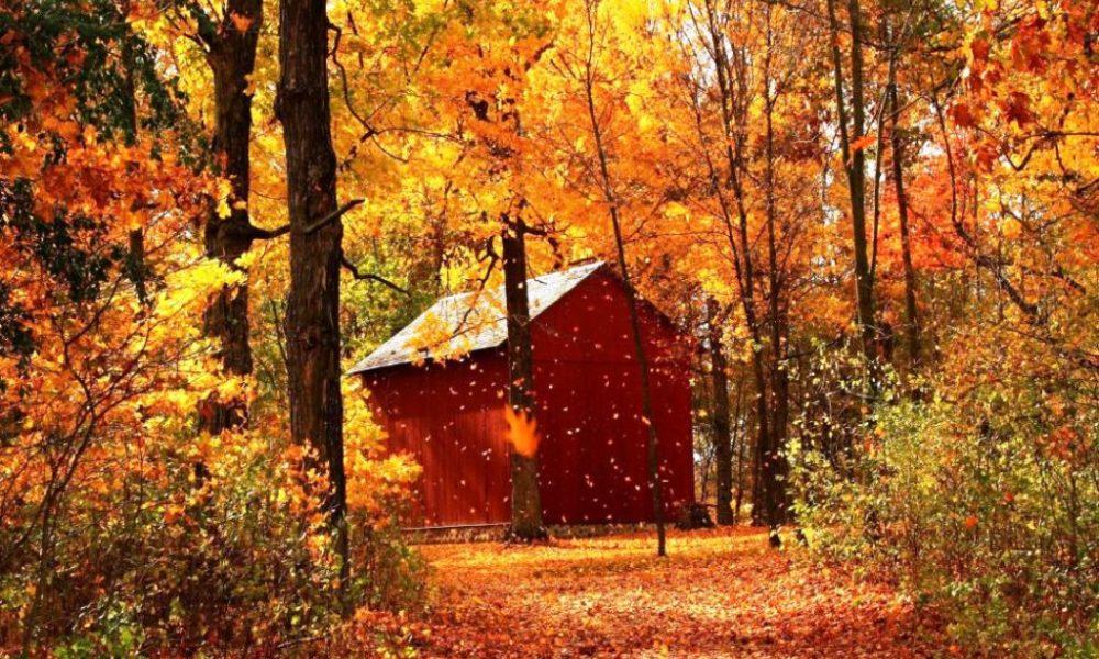 21-beautiful-autumn-wallpapers