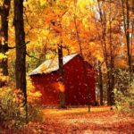 20 Beautiful Autumn Wallpaper Ideas For You