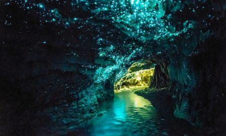 3-waitomo-caves-new-zealand