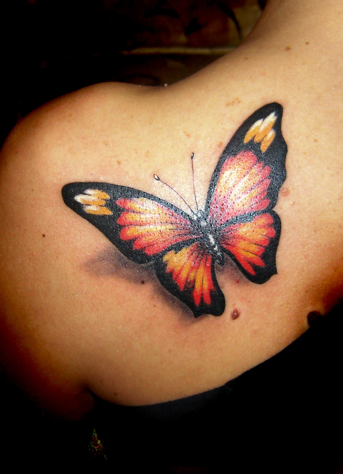 3-butterfly tattoo ideas