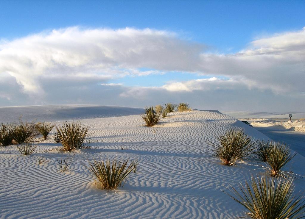 4-white-sands-memorial-new-mexico-usa