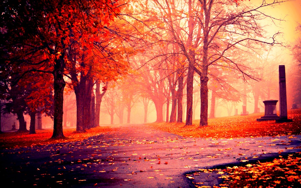 6-beautiful-autumn-wallpapers