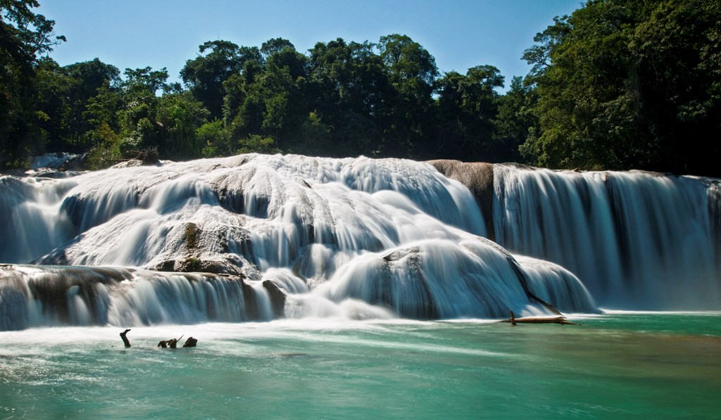 7-true-toad-azul-waterfalls-mexico