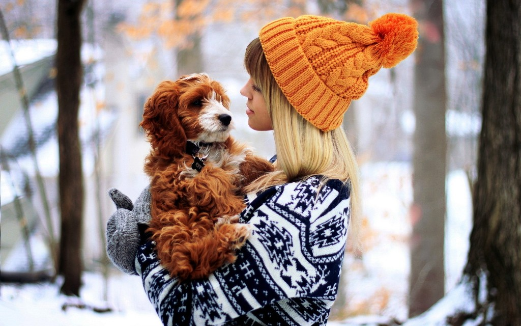 girls_girl_in_orange_hat_holds_a_dog_