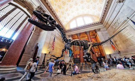 ny-american-museum-of-natural-history