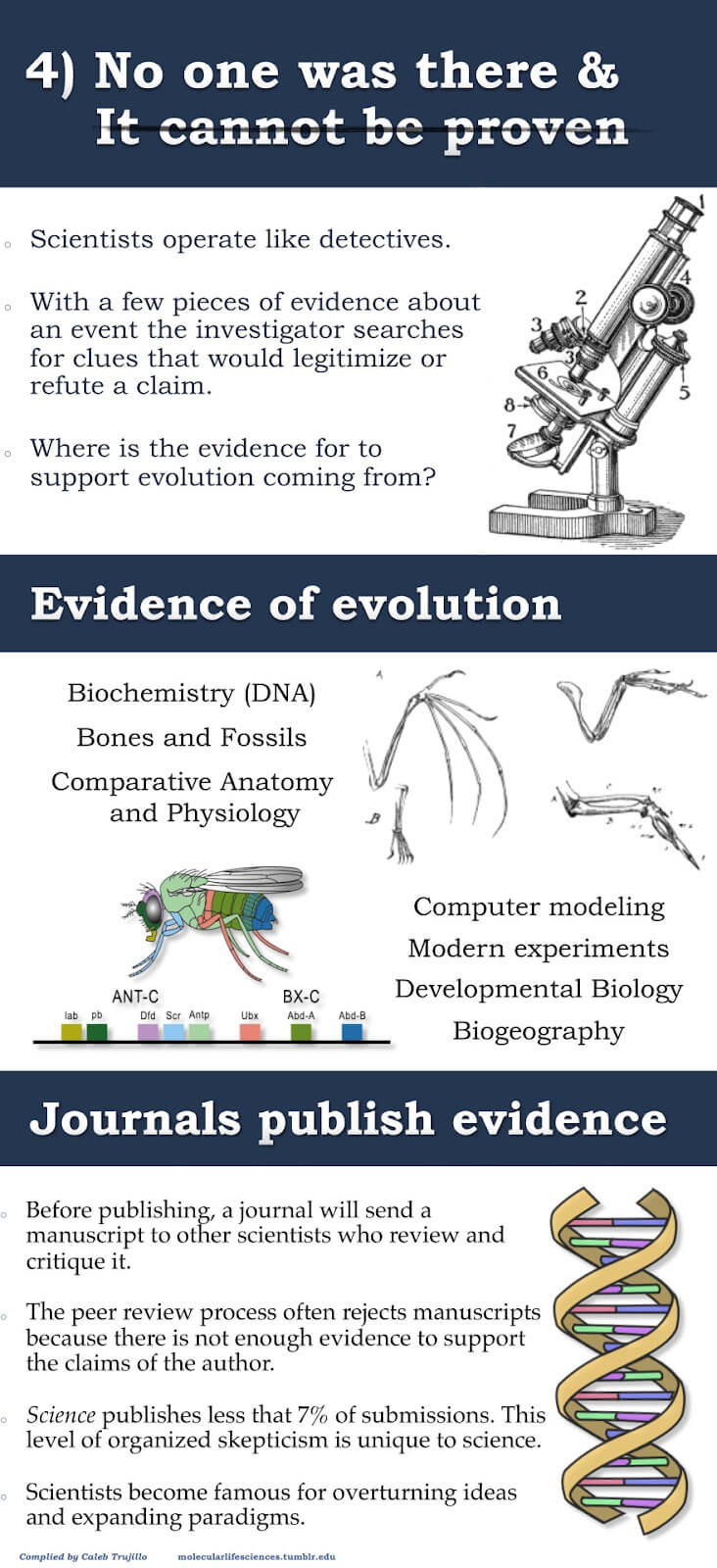 The myths about evolution4