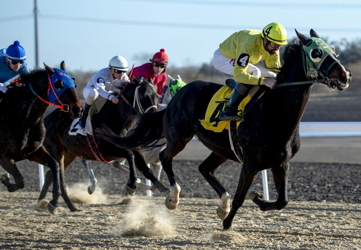 Horse Race Betting1