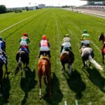 What to Look for When Choosing a Horse Race Betting Website