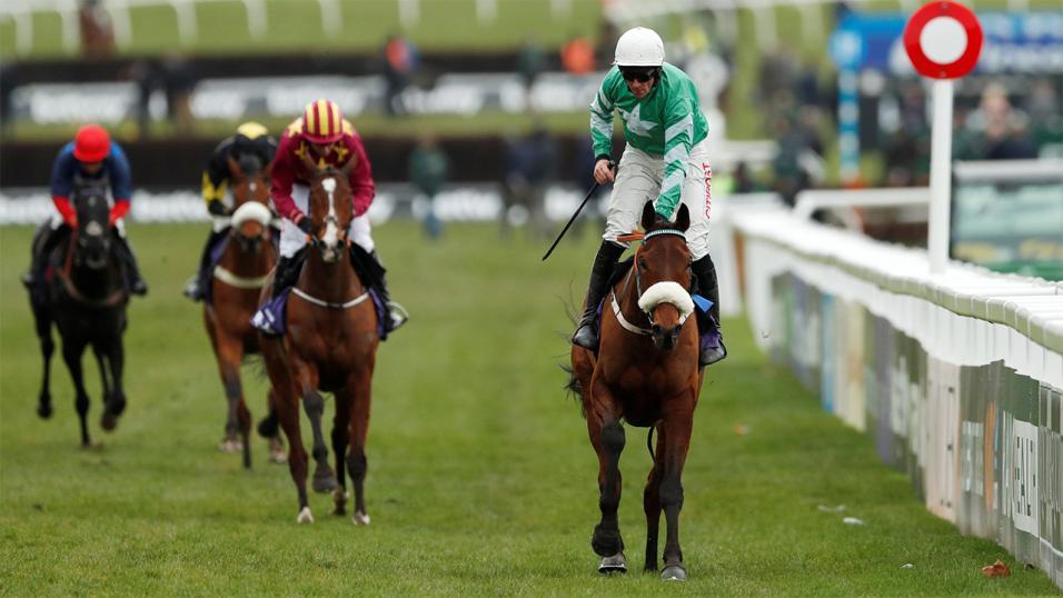 Horse Race Betting3