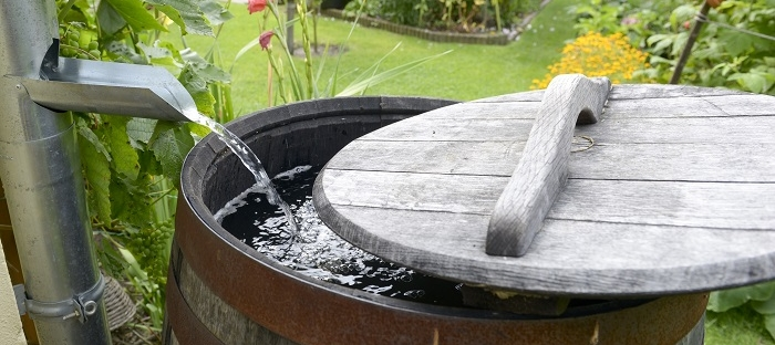Outdoor Water Conservation Tips1